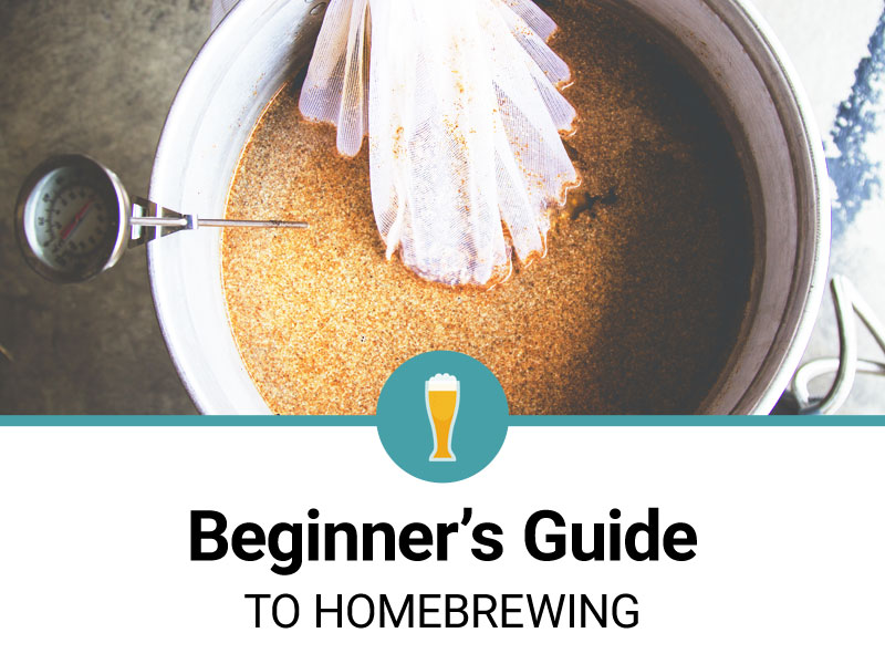 beginners-guide-homebrewing