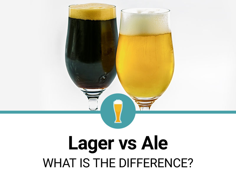lager-vs-ale